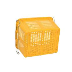Cheap Price Plastic Injection Agriculture Crate for Vegetable and Fruit